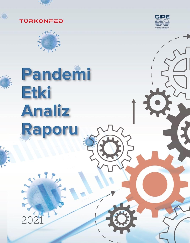 Pandemi Etki Analiz Raporu