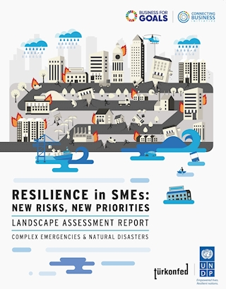 """""""Resilience in SMEs: New Risks, New Priorities"""" Report"""