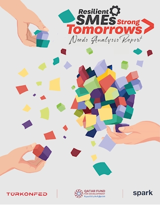 Resilient SMEs Strong Tomorrows - Needs Analysis Report